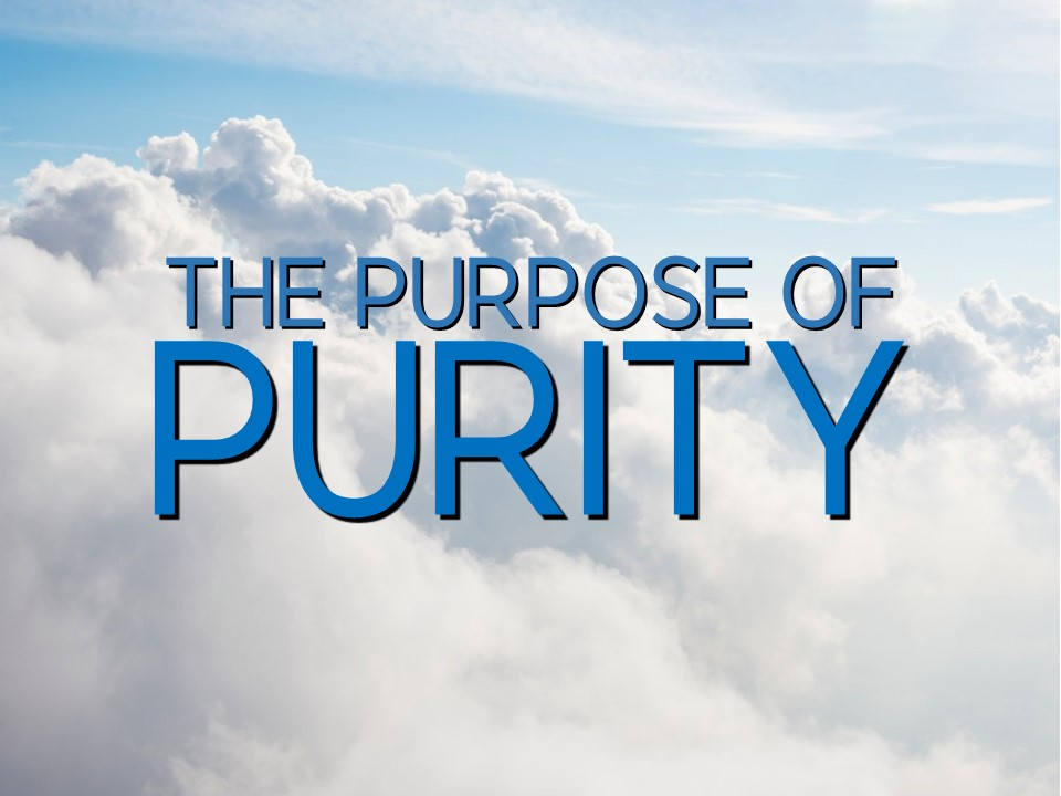 The Purpose of Purity